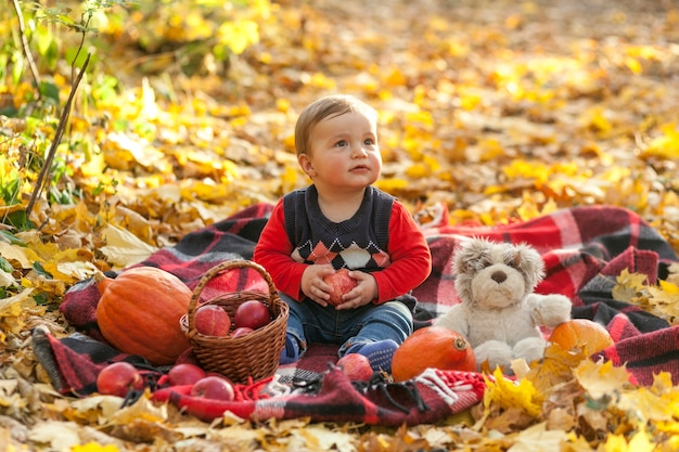 Adorable baby boy with apples and teddy bear Free Photo