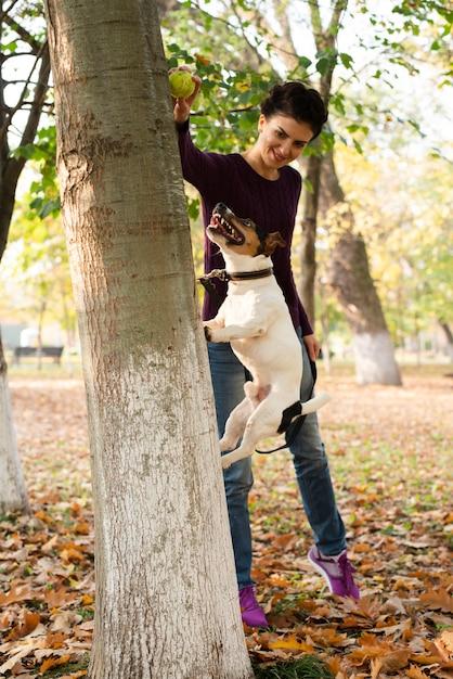 Очаровательная собака прыгает в парке Бесплатные Фотографии