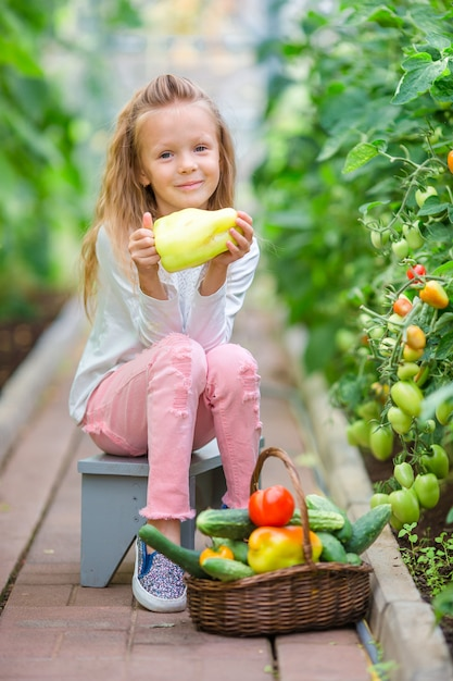 Adorable little girl harvesting in greenhouse. portrait of kid with the big tomato in hands Premium Photo