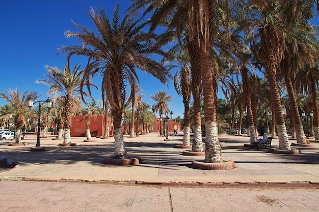 Adrar city in desert sahara, algeria Premium Photo