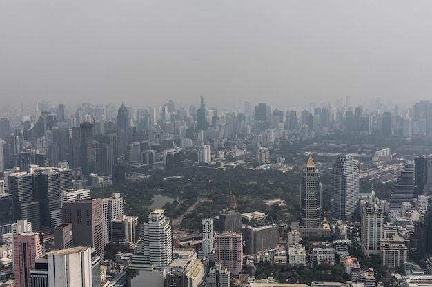 Aerial cityscape of picturesque bangkok at daytime from rooftop. panoramic skyline of the biggest city in thailand. the concept of metropolis. Free Photo