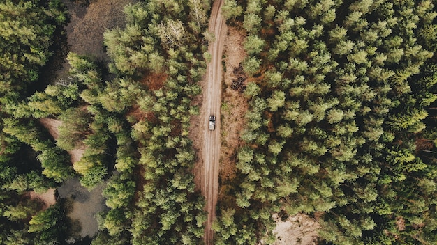 Aerial shot of a car driving on a pathway in the middle of a green forest Free Photo