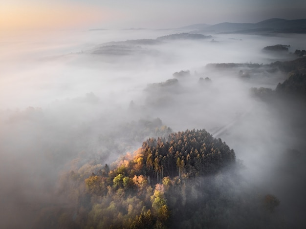 Aerial shot of a forested mountain srouned by fog, great fora background or a blog Free Photo