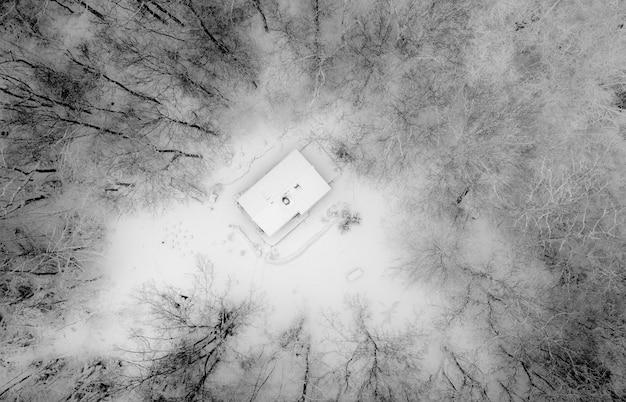 Ripresa aerea di una casa circondata da alberi spogli in bianco e nero Foto Gratuite