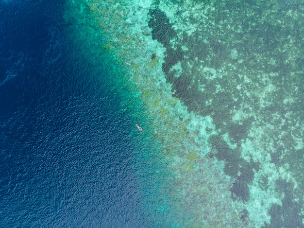 Aerial top down people snorkeling on coral reef tropical caribbean sea, turquoise blue water Premium Photo