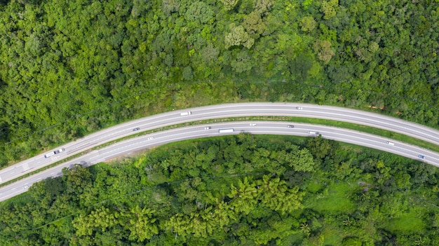 Aerial top view of a provincial road passing through a forest Premium Photo
