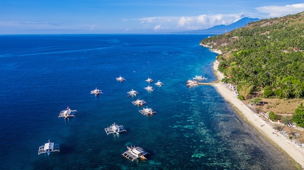Aerial view bay and shore in oslob, cebu, philippine, it is a best place to snorkel and scuba drive and whale shark watching. Premium Photo
