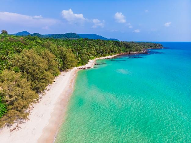 Vista aerea di bella spiaggia e mare con palme da cocco Foto Gratuite