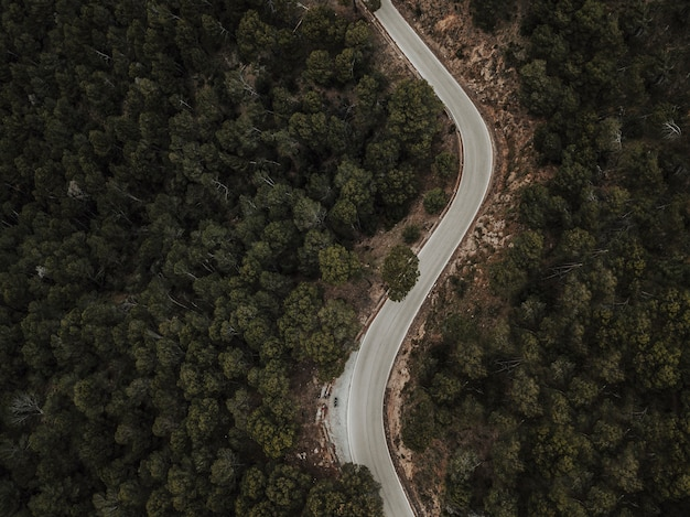 Aerial view of curve road through forest landscape Free Photo
