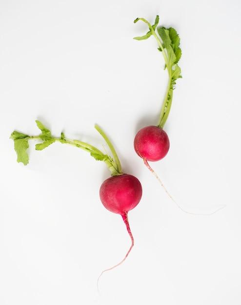 Aerial view of fresh radish on white background Free Photo