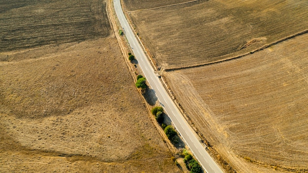 Aerial view of long road with trees Free Photo