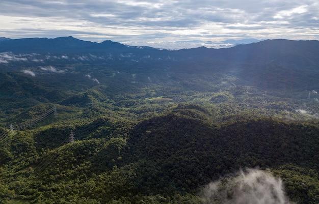 Аэрофотоснимок столба высокого напряжения или башни высокого напряжения в лесу Premium Фотографии