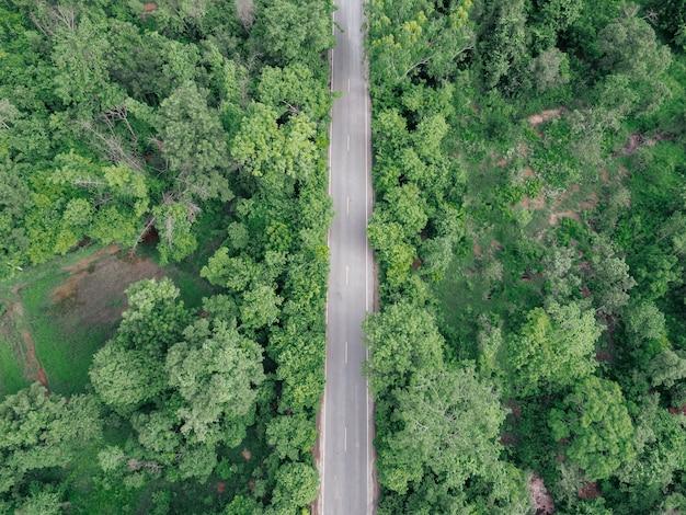 緑の森の道路の航空写真。田舎道のある素晴らしい風景 Premium写真