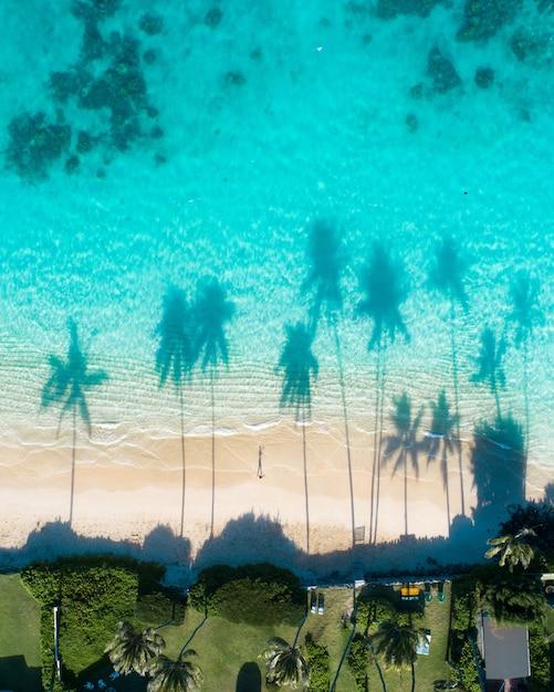 바다의 청록색 물에 야자수의 반사의 공중보기 무료 사진