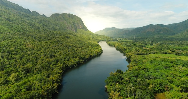 Aerial view of river in tropical green forest with mountains in background Premium Photo