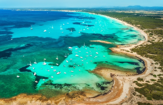 Aerial view of transparent sea with blue water, sandy beach, rocks, green trees, yachts and boats in sunny morning in summer Premium Photo