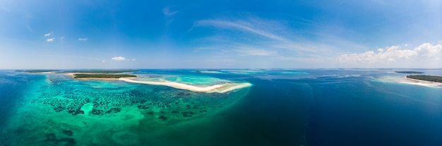 Aerial view tropical beach island reef caribbean sea. white sand bar snake island, indonesia moluccas archipelago, kei islands, banda sea, travel destination, best diving snorkeling Premium Photo