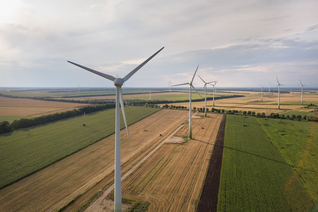 Aerial view of wind turbine generators in field producing clean ecological electricity. Premium Photo