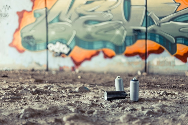 Aerosol cans in front of graffiti on wall Free Photo