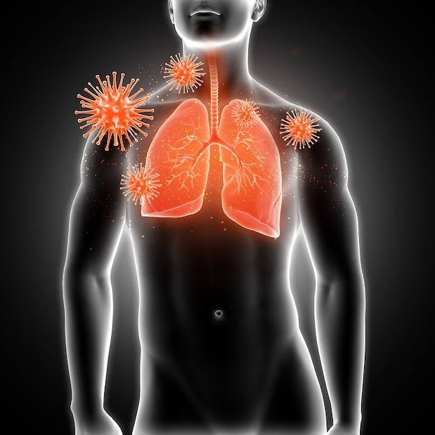 3d визуализации медицинской мужской фигуры с легкими подсвечена и вирусные клетки Бесплатные Фотографии