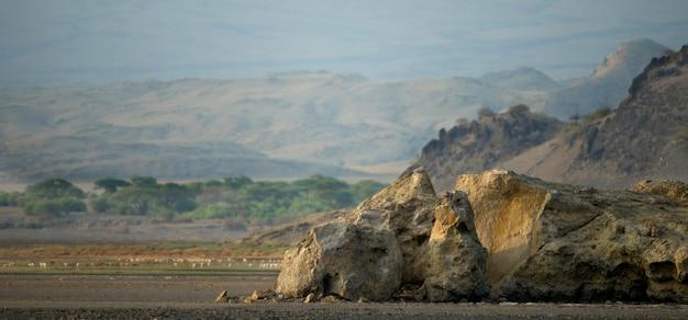 アフリカの風景、タンザニア Premium写真