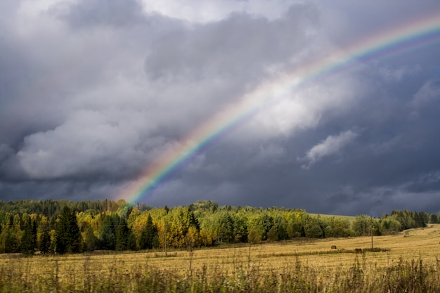 After-thunderstorm sky and rainbow over autumn forest and yellow harvested field. Premium Photo