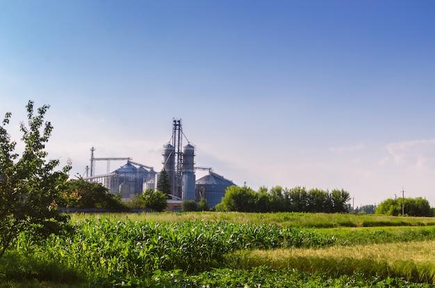 Сельскохозяйственные предприятия. на лицо блестящие железные контейнеры для хранения зерна. Premium Фотографии