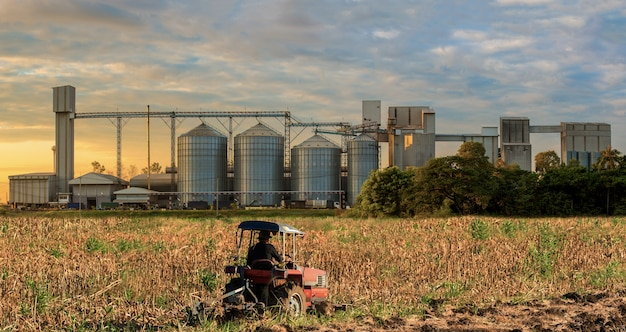Agricultural silos storage grains, wheat, corn, soy ...