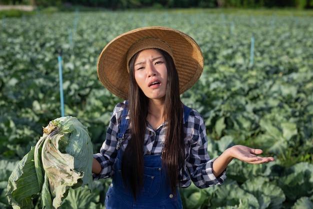 腐ったキャベツに満足していない農業の女性。 無料写真