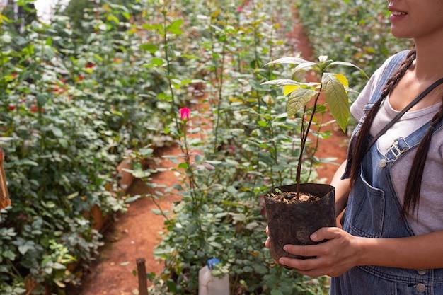 農業。若い女性が保育園で作業を検査します。 無料写真