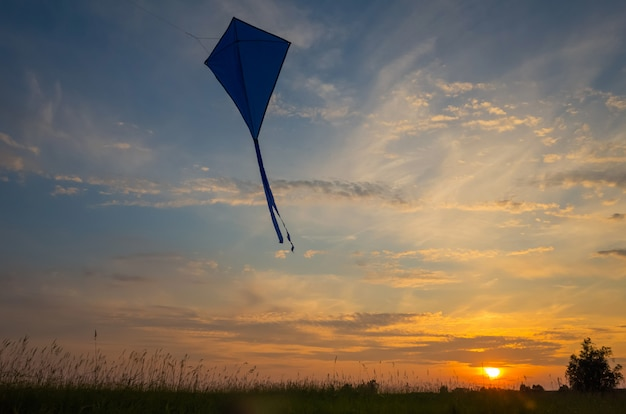 An air snake flies against the sunset sky. Premium Photo