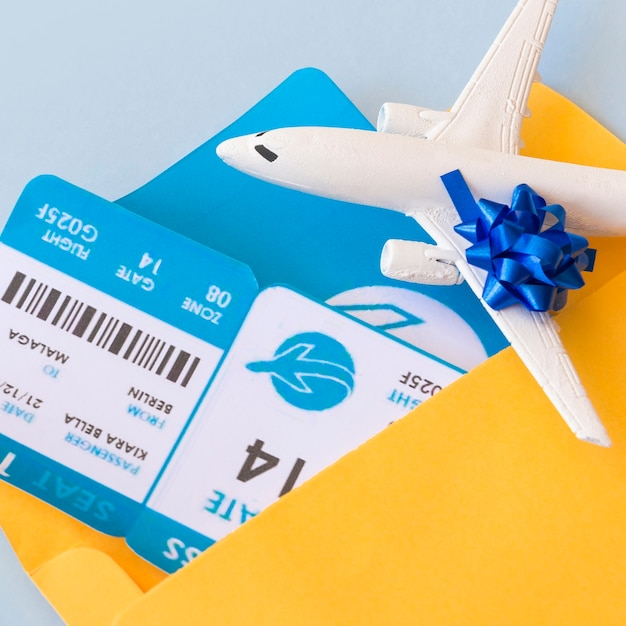 Airplane tickets in document case near aircraft Free Photo