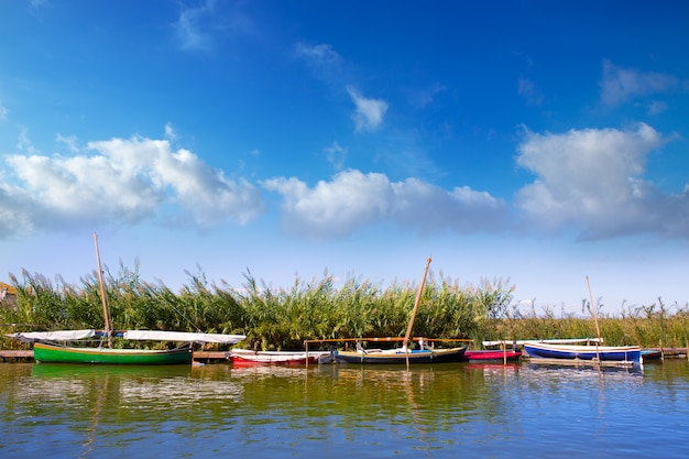 Albufera channel boats in el palmar of valencia Premium Photo