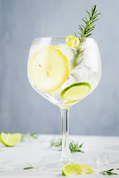 Alcohol drink, gin tonic cocktail, with lemon, lime, rosemary and ice. Premium Photo