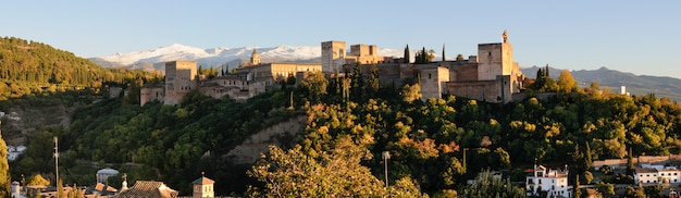 Alhambra surrounded by green trees Free Photo