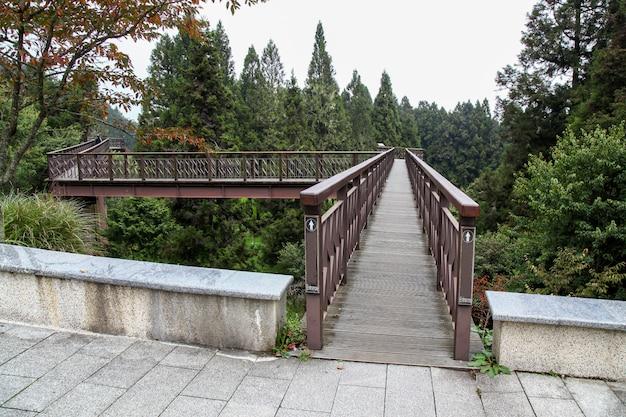 Деревянная дорожка неба в alishan национальном парке на тайване. Premium Фотографии