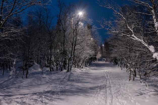 눈이 밤 겨울 공원에서 등불에 비추는 골목 프리미엄 사진