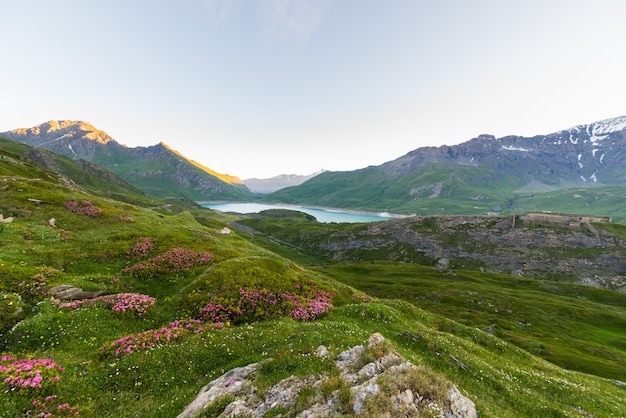 Alpine landscape at sunrise at high altitude Premium Photo