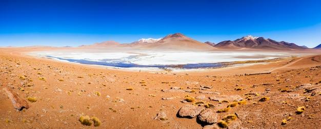 湖、ボリビアaltiplano Premium写真
