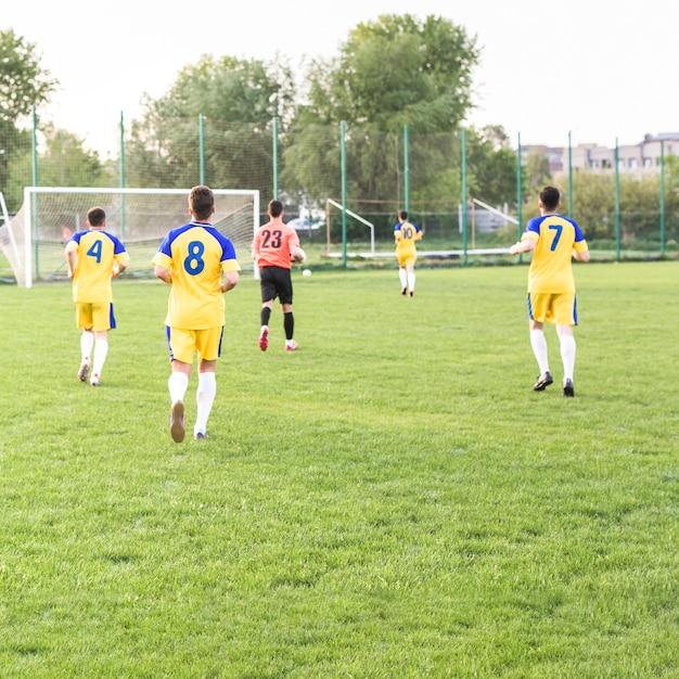 Amateur football concept Free Photo