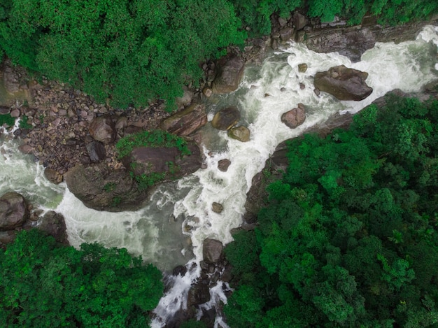 Amazing aerial shot of a river surrounded by beautiful nature Free Photo