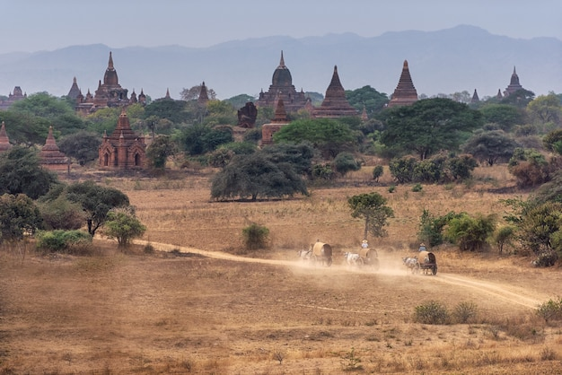 Amazing famous travel and landscape scene of ancient temples and carriages Premium Photo