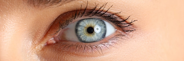 Amazing female blue and green colored eye close-up Premium Photo