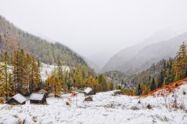 Удивительная туманная сцена заснеженной горы, частично покрытой лесом Бесплатные Фотографии
