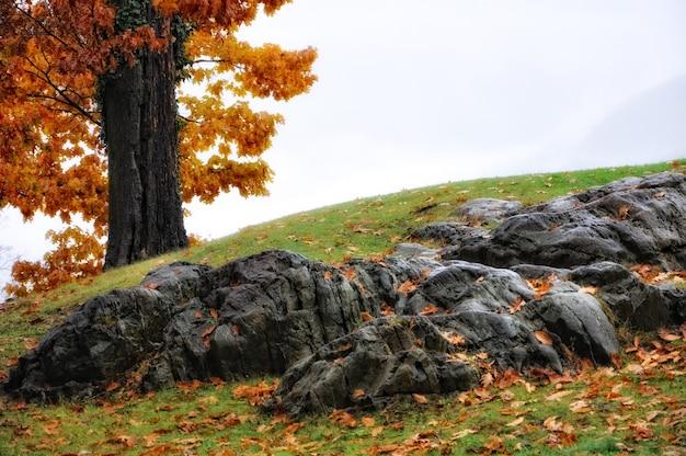 Incredibile scenario di un tumulo parzialmente ricoperto di pietre ed erba Foto Gratuite