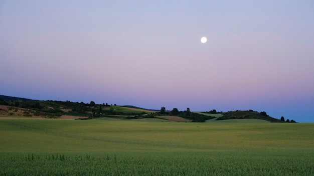 Amazing summer twilight scenery of the green valley Free Photo