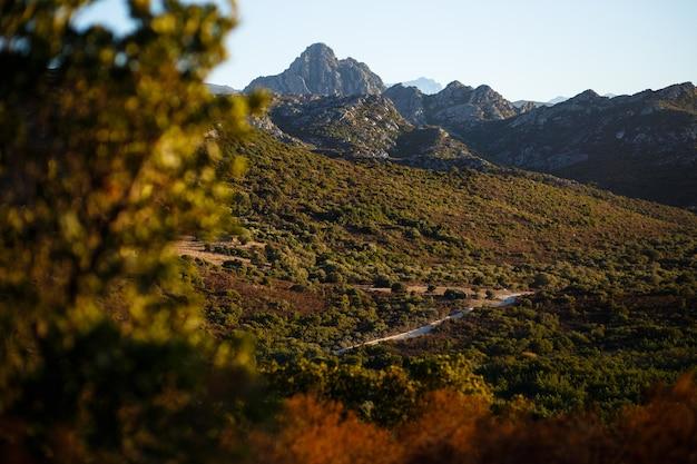 Удивительный вид на горы острова корсика, франция. горизонтальный вид. Premium Фотографии