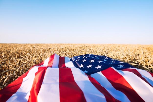 アメリカ合衆国の強力な農業、経済、自由を表す小麦畑のアメリカ国旗 無料写真