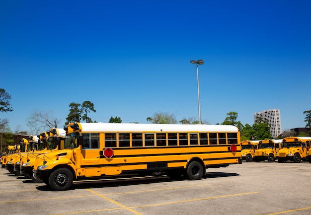 American typical school buses row in a parking lot Premium Photo
