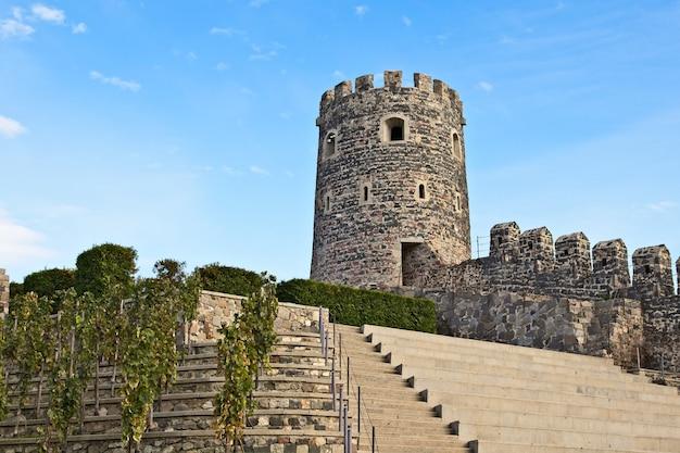 ジョージア州の澄んだ空に触れる古代の歴史的な塔 無料写真
